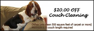 $20 Off Couch Cleaning